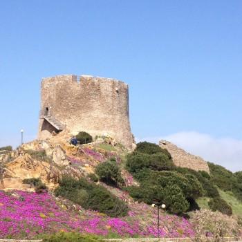 Torre-aprile-2014