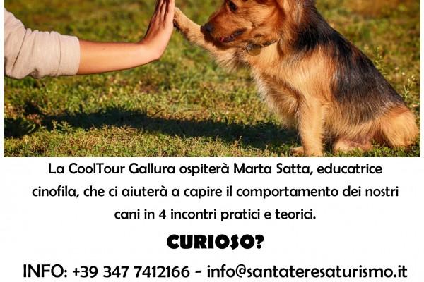 locandina-corso-cani