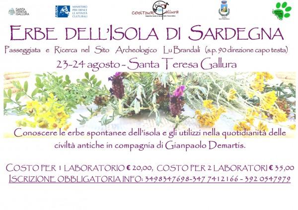 Locandina Erbe spontanee della Sardegna Calarighe agosto