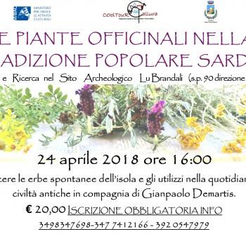 Locandina Erbe spontanee della Sardegna Calarighe aprile 2018